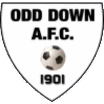 Odd Down Reserves Logo